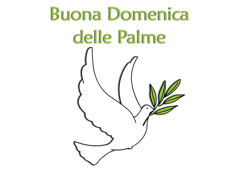 Domenica delle palme storia origini tradizioni immagini - Storia di palma domenica ks1 ...